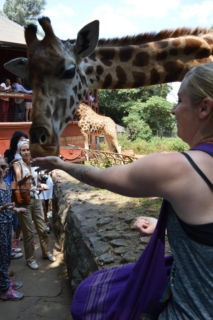 Globalong orphelinat girafe Kenya Afrique