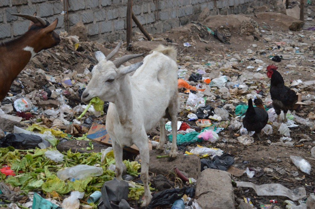 Déchets rues Kenya Globalong